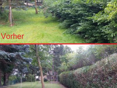 Wendling - Gartenservice & Baumarbeiten - Grabpflege & Floristik