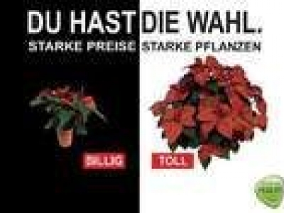 Blumenhaus Holzkamm