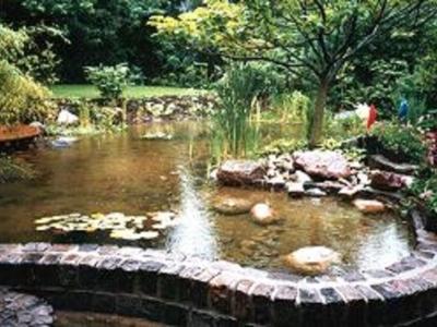 Kirsch Gärten - Gartenbau und -pflege