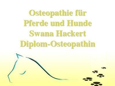 Osteopathie für Pferde und Hunde