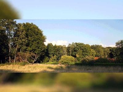 Broich-Speldorfer Wald