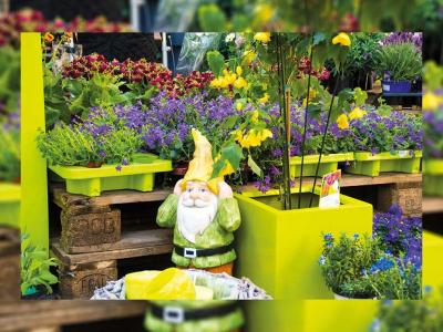 Mülheimer Blumenmarkt