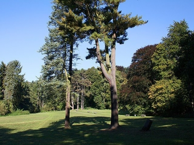 Morper Park